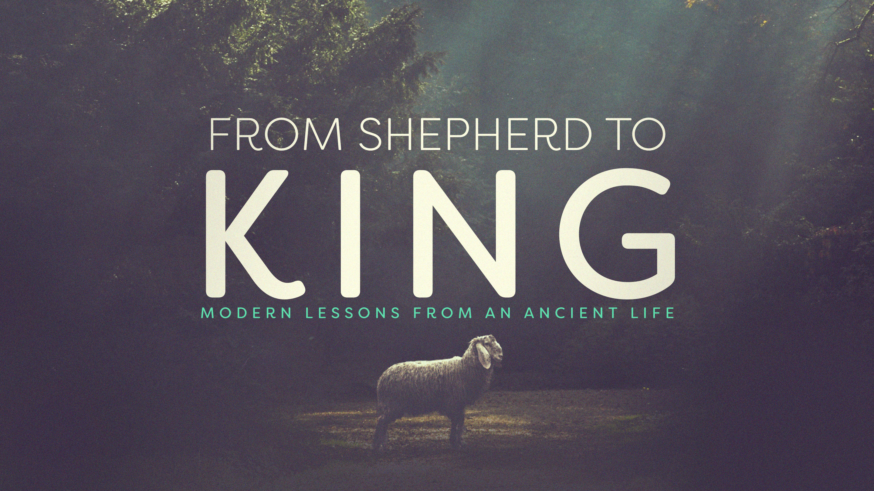 Shepherd to King