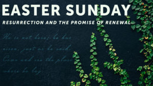 Resurrection and the Promise of Renewal